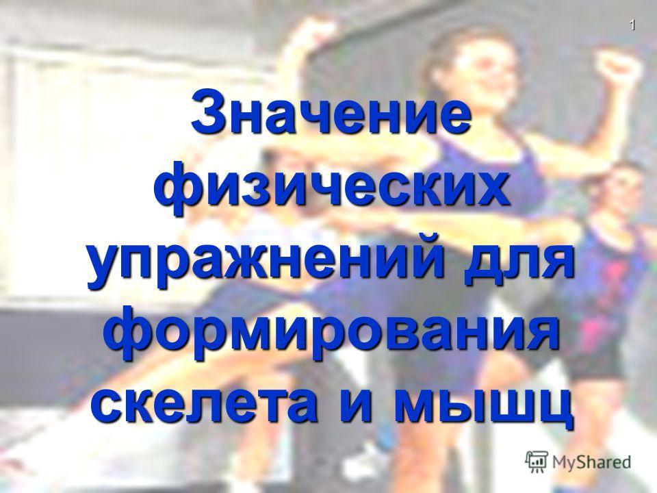 Значение физических упражнений для формирования скелета и мышц 1