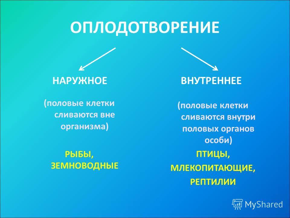 ОПЛОДОТВОРЕНИЕ НАРУЖНОЕВНУТРЕННЕЕ (половые клетки сливаются вне организма) РЫБЫ, ЗЕМНОВОДНЫЕ (половые клетки сливаются внутри половых органов особи) ПТИЦЫ, МЛЕКОПИТАЮЩИЕ, РЕПТИЛИИ