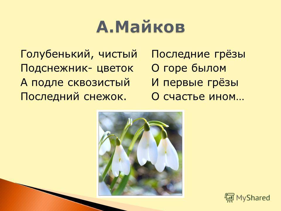 Голубенький, чистый Подснежник- цветок А подле сквозистый Последний снежок. Последние грёзы О горе былом И первые грёзы О счастье ином…