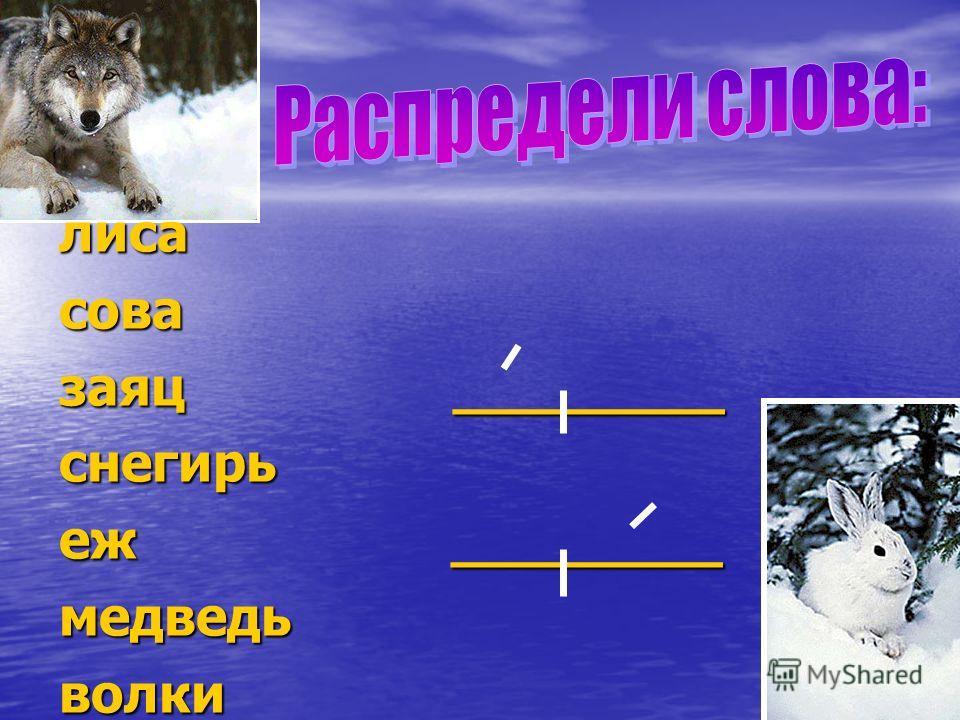 лисасова заяц ________ снегирь еж ________ медведьволки