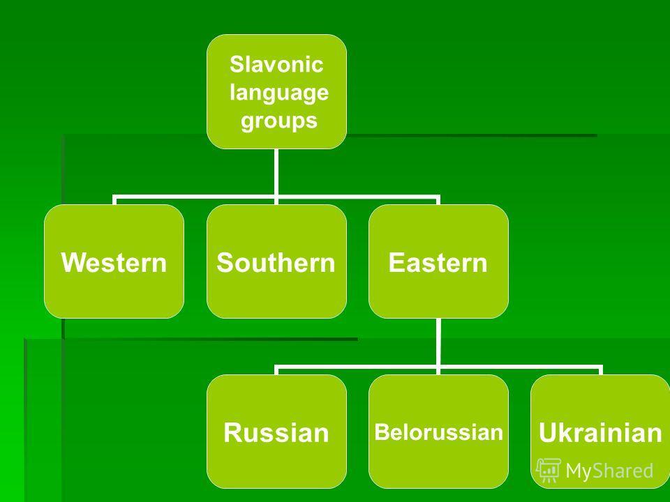 Slavonic language groups WesternSouthernEastern RussianBelorussianUkrainian