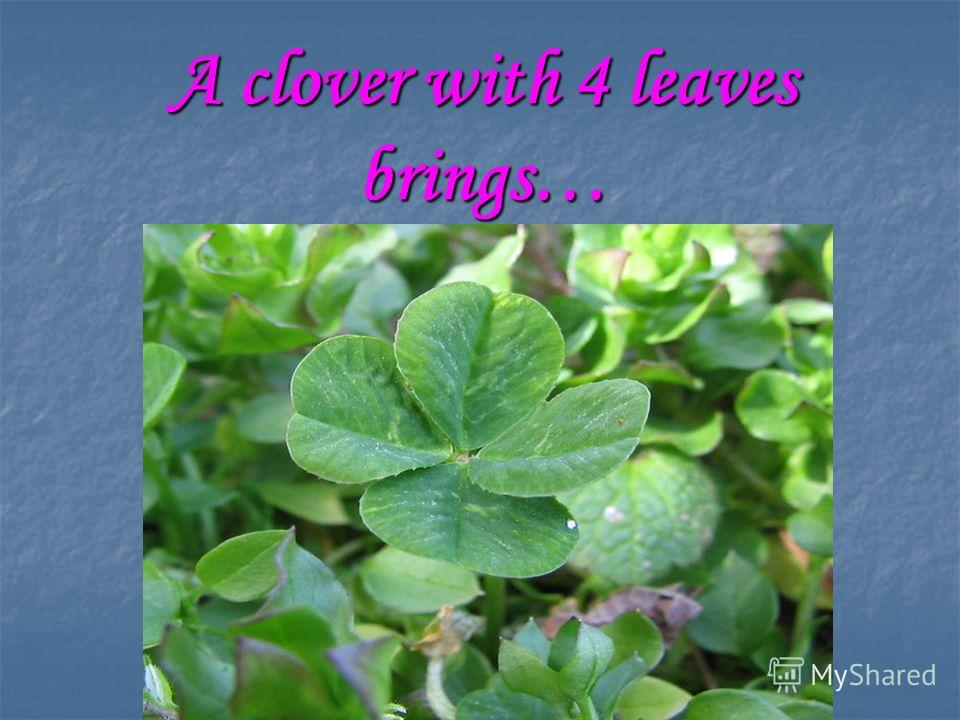 A clover with 4 leaves brings…