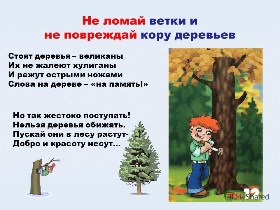 Не ломай ветки и не повреждай кору деревьев Стоят деревья – великаны Их не жалеют хулиганы И режут острыми ножами Слова на дереве – «на память!» Но так жестоко поступать! Нельзя деревья обижать. Пускай они в лесу растут- Добро и красоту несут…