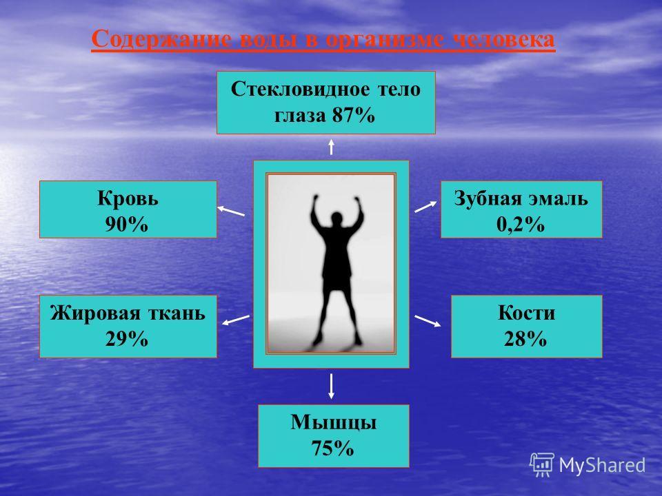 Стекловидное тело глаза 87% Кровь 90% Жировая ткань 29% Зубная эмаль 0,2% Кости 28% Мышцы 75% Содержание воды в организме человека