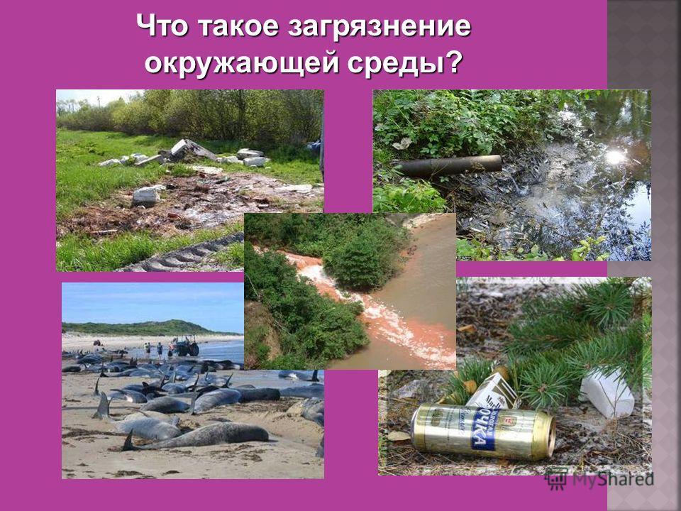 ресурсы земельныебиологическиеводные