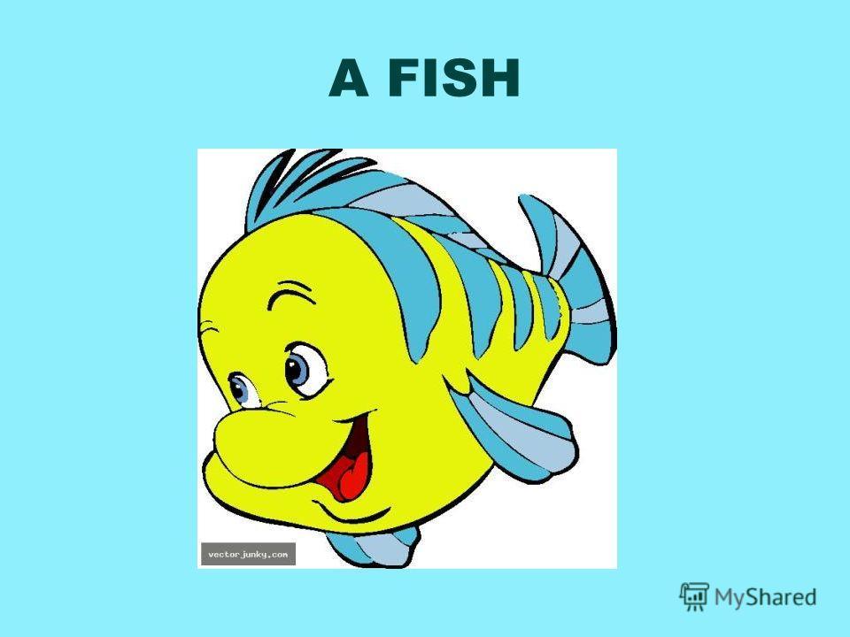 A FISH