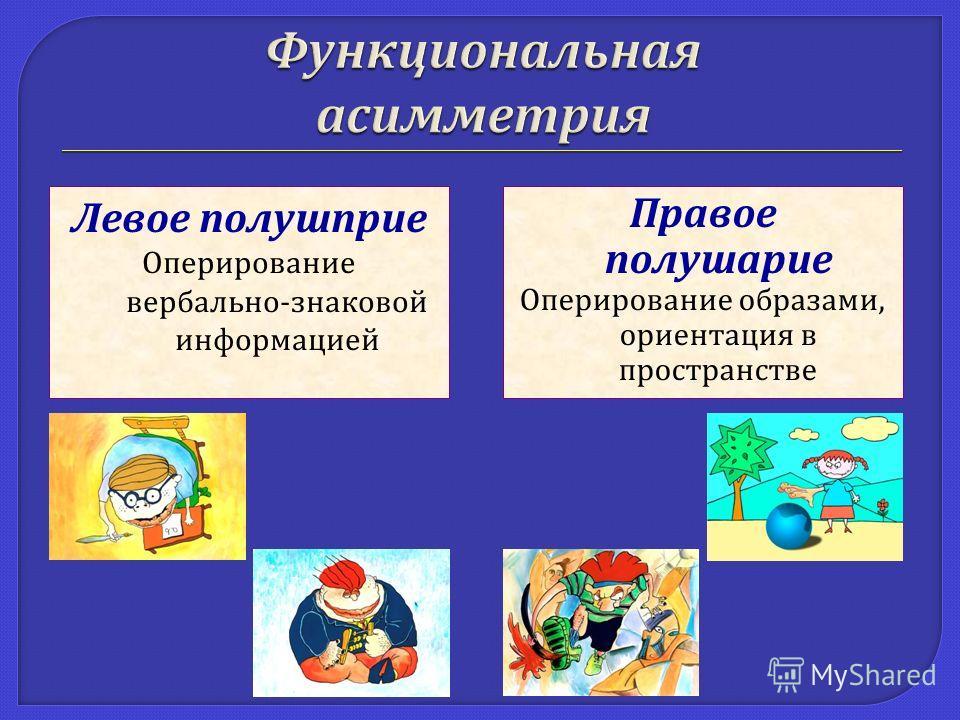 Левое полушприе Оперирование вербально - знаковой информацией Правое полушарие Оперирование образами, ориентация в пространстве