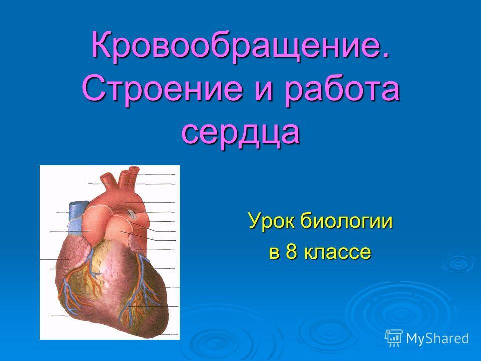 Работа сердца презентация скачать бесплатно