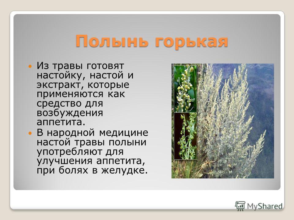 Полынь горькая Из травы готовят настойку, настой и экстракт, которые применяются как средство для возбуждения аппетита. В народной медицине настой травы полыни употребляют для улучшения аппетита, при болях в желудке.