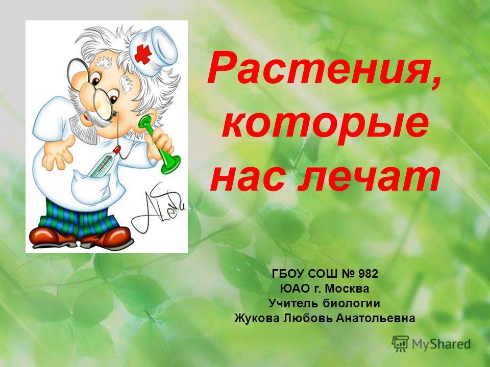 Растения, которые нас лечат ГБОУ СОШ 982 ЮАО г. Москва Учитель биологии Жукова Любовь Анатольевна