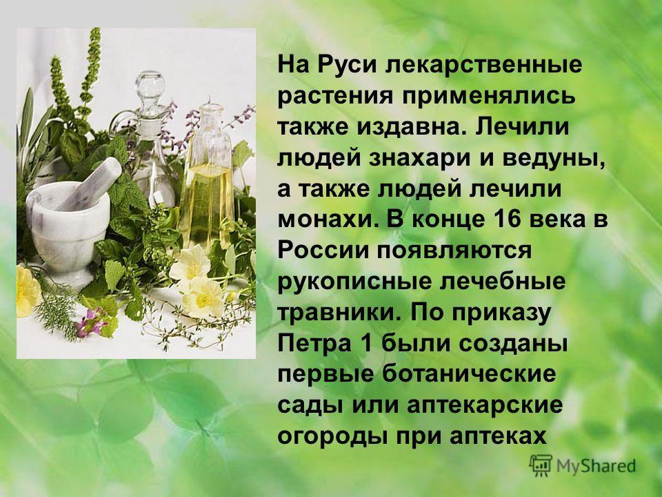 На Руси лекарственные растения применялись также издавна. Лечили людей знахари и ведуны, а также людей лечили монахи. В конце 16 века в России появляются рукописные лечебные травники. По приказу Петра 1 были созданы первые ботанические сады или аптек