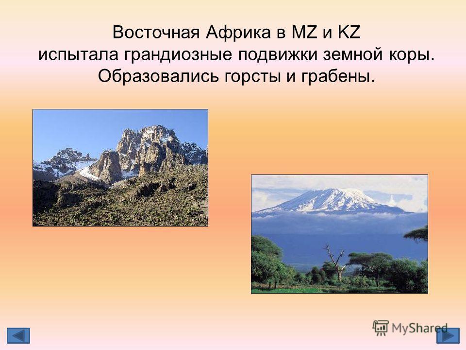 Восточная Африка в MZ и KZ испытала грандиозные подвижки земной коры. Образовались горсты и грабены.