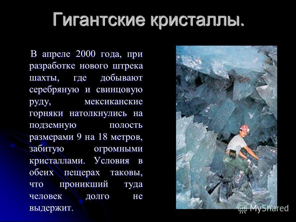 Гигантские кристаллы. В апреле 2000 года, при разработке нового штрека шахты, где добывают серебряную и свинцовую руду, мексиканские горняки натолкнулись на подземную полость размерами 9 на 18 метров, забитую огромными кристаллами. Условия в обеих пе