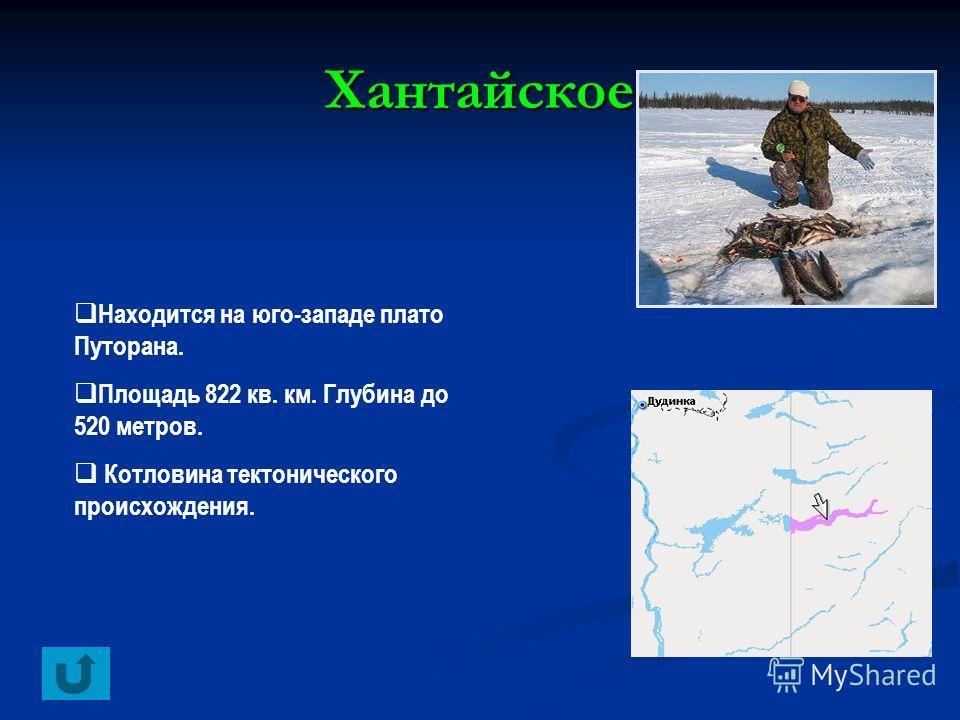 Хантайское Находится на юго-западе плато Путорана. Площадь 822 кв. км. Глубина до 520 метров. Котловина тектонического происхождения.