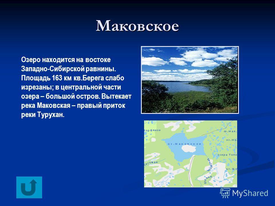 Маковское Озеро находится на востоке Западно-Сибирской равнины. Площадь 163 км кв.Берега слабо изрезаны; в центральной части озера – большой остров. Вытекает река Маковская – правый приток реки Турухан.