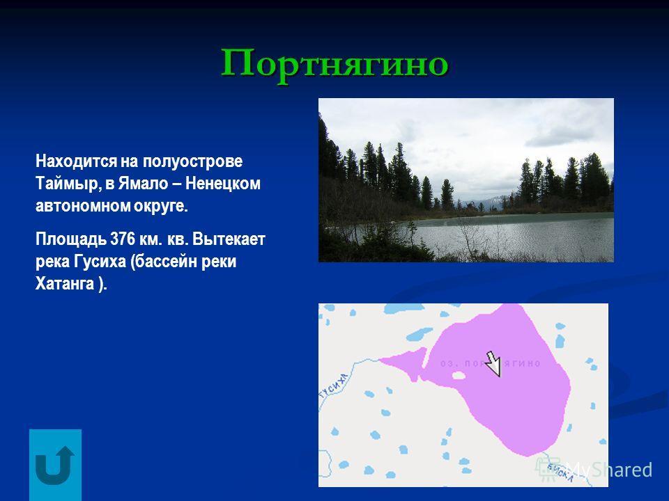 Портнягино Находится на полуострове Таймыр, в Ямало – Ненецком автономном округе. Площадь 376 км. кв. Вытекает река Гусиха (бассейн реки Хатанга ).