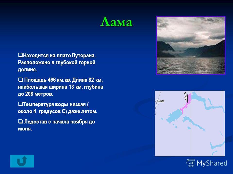 Лама Находится на плато Путорана. Расположено в глубокой горной долине. Площадь 466 км.кв. Длина 82 км, наибольшая ширина 13 км, глубина до 208 метров. Температура воды низкая ( около 4 градусов С) даже летом. Ледостав с начала ноября до июня.