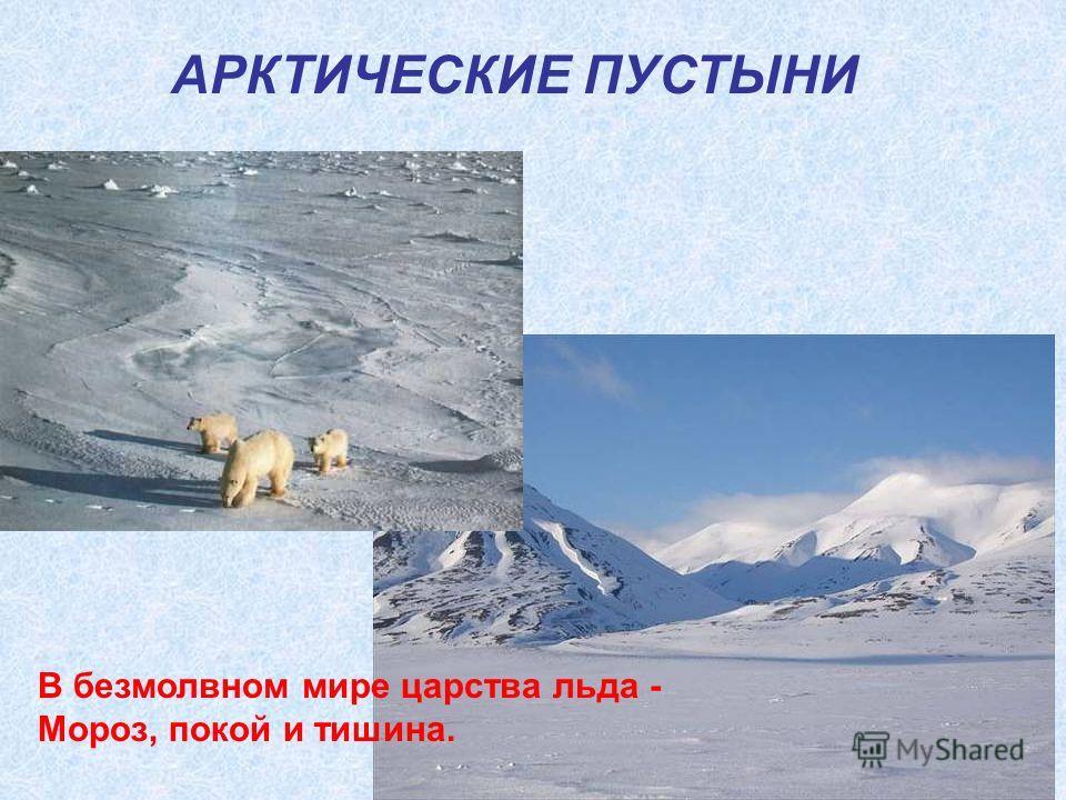 В безмолвном мире царства льда - Мороз, покой и тишина. АРКТИЧЕСКИЕ ПУСТЫНИ