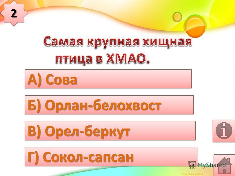 А) логово Б) нора В) берлога Г) хатка 11