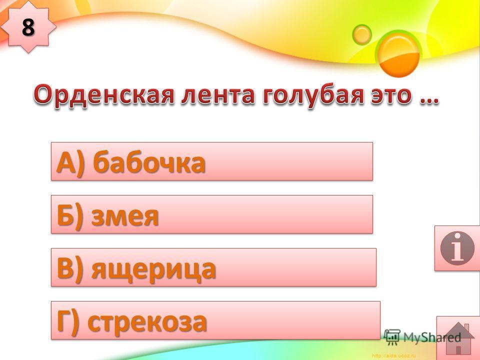 А) бабочка Б) лягушка В) стрекоза Г) русалочка 77