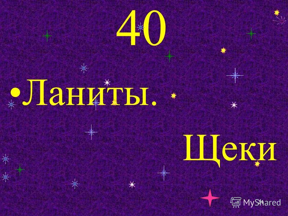 40 Ланиты. Щеки 24