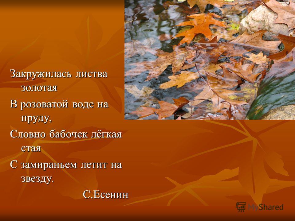 Закружилась листва золотая В розоватой воде на пруду, Словно бабочек лёгкая стая С замираньем летит на звезду. С.Есенин