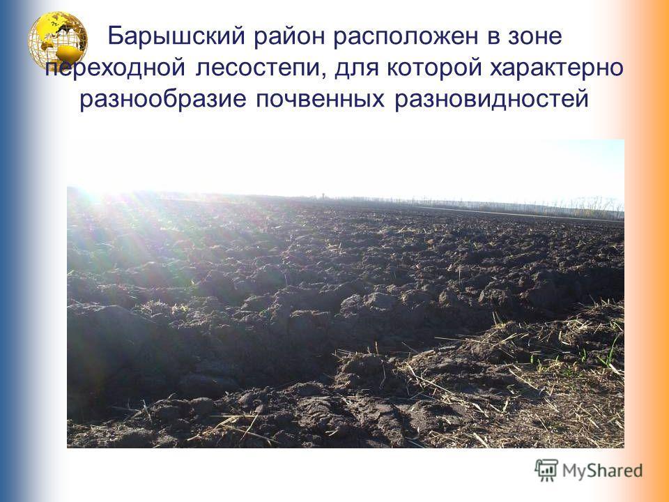 Барышский район расположен в зоне переходной лесостепи, для которой характерно разнообразие почвенных разновидностей