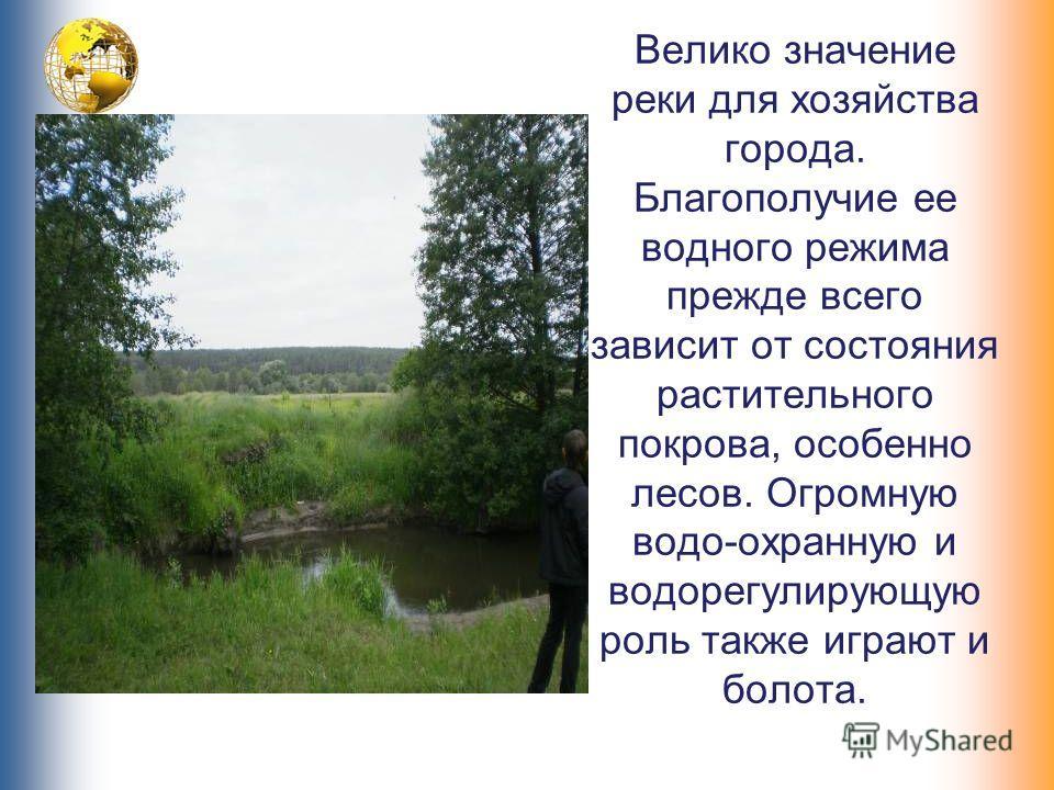 Велико значение реки для хозяйства города. Благополучие ее водного режима прежде всего зависит от состояния растительного покрова, особенно лесов. Огромную водо-охранную и водорегулирующую роль также играют и болота.