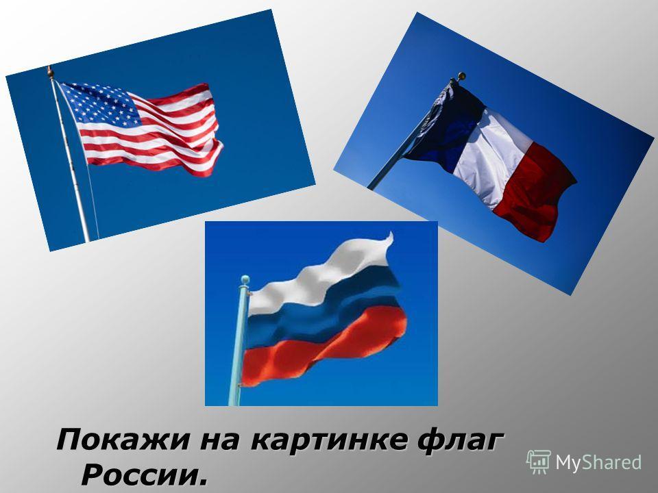 Покажи на картинке флаг России.