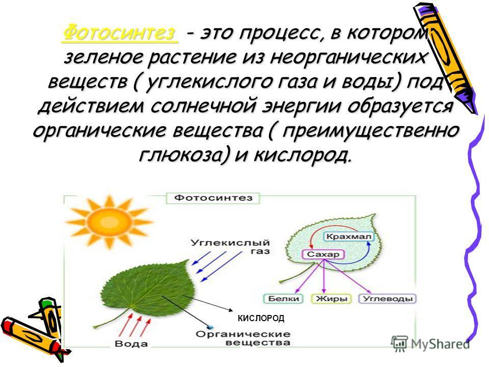 Фотосинтез - это процесс, в котором зеленое растение из неорганических веществ ( углекислого газа и воды) под действием солнечной энергии образуется органические вещества ( преимущественно глюкоза) и кислород. КИСЛОРОД