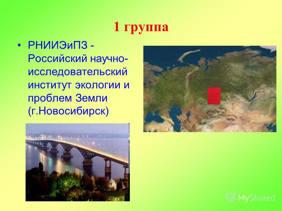 1 группа РНИИЭиПЗ - Российский научно- исследовательский институт экологии и проблем Земли (г.Новосибирск)