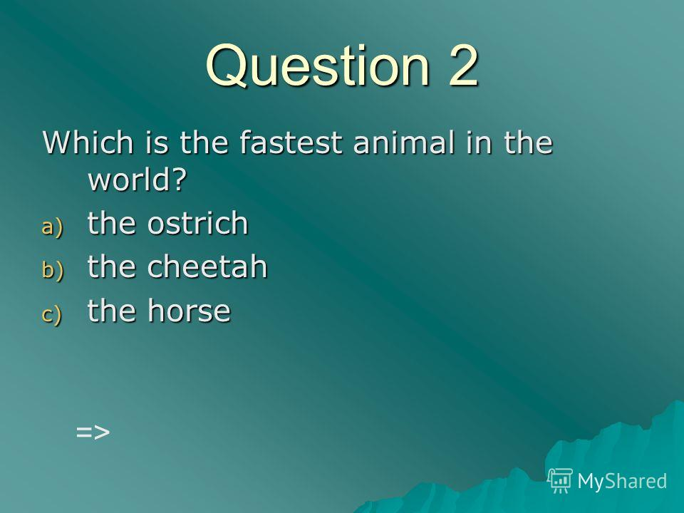 Question 2 Which is the fastest animal in the world? a) the ostrich b) the cheetah c) the horse =>