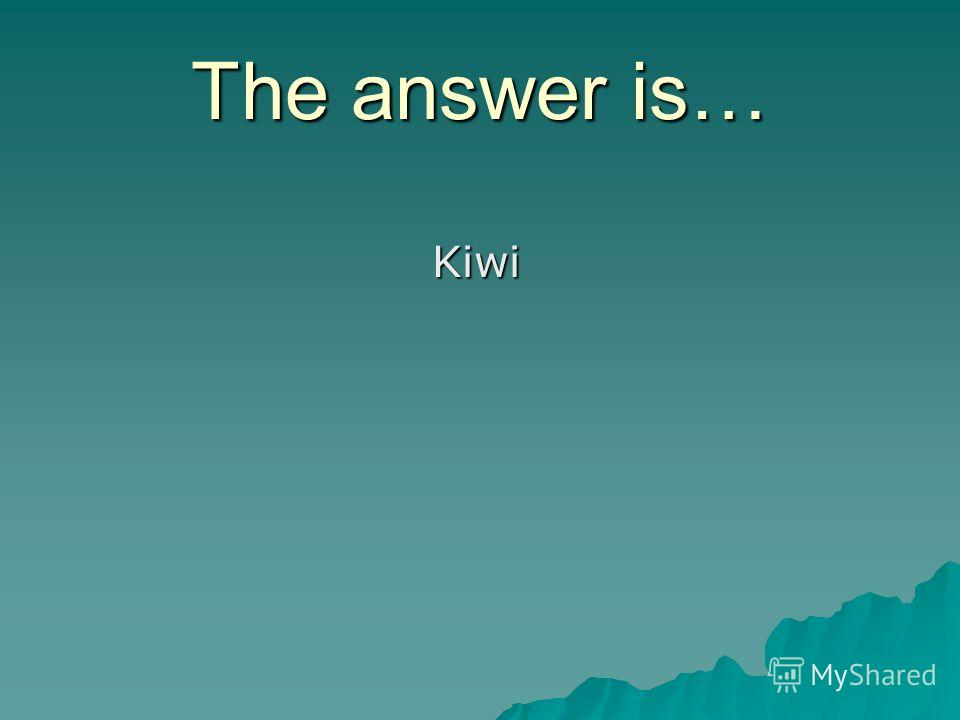 The answer is… Kiwi