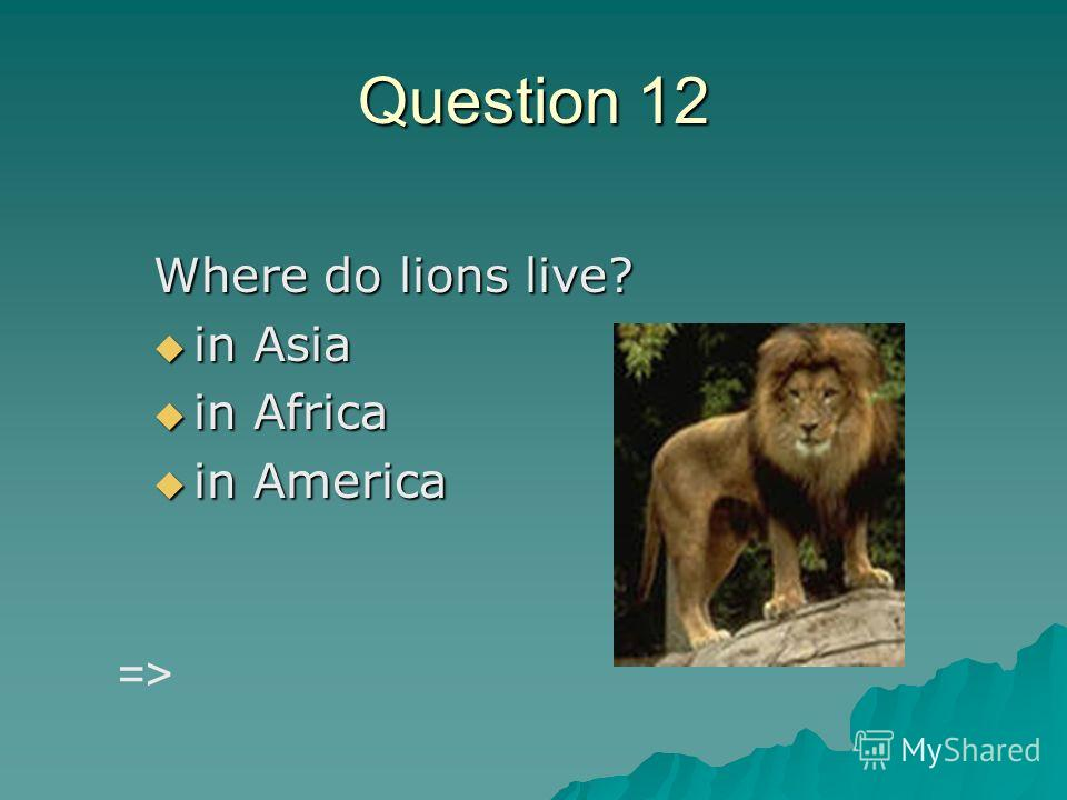 Question 12 Where do lions live? in Asia in Asia in Africa in Africa in America in America =>