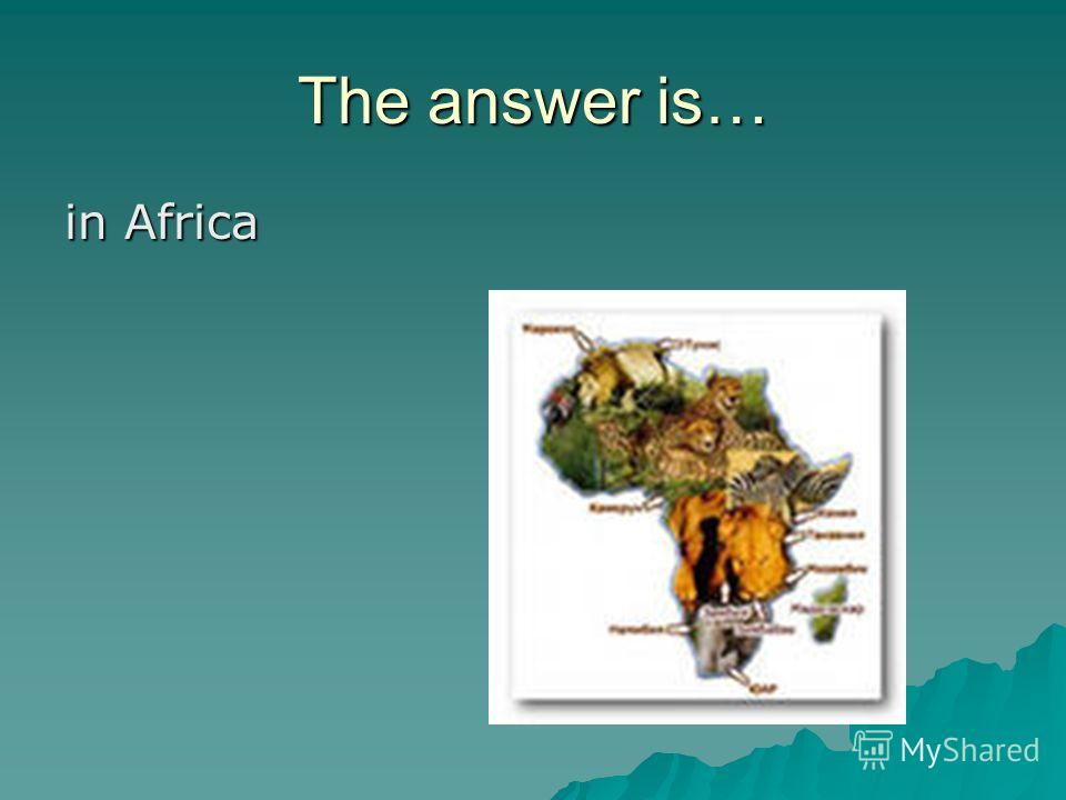 The answer is… in Africa