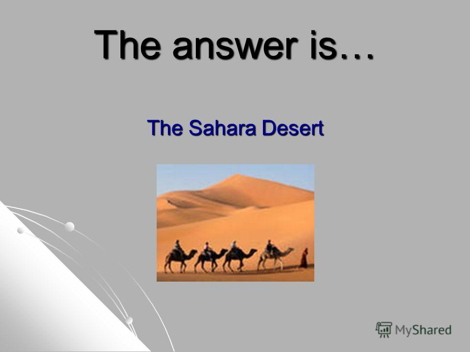 The answer is… The Sahara Desert
