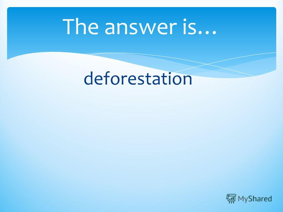 The answer is… deforestation