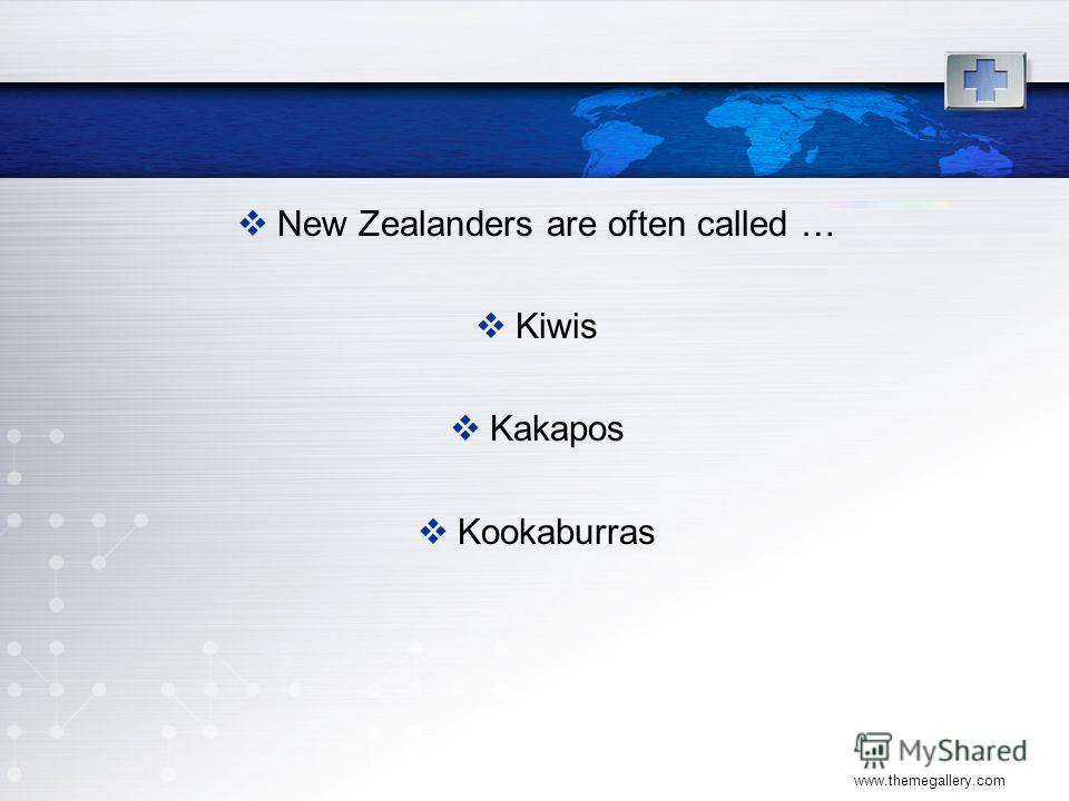 www.themegallery.com New Zealanders are often called … Kiwis Kakapos Kookaburras