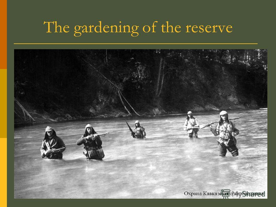 The gardening of the reserve