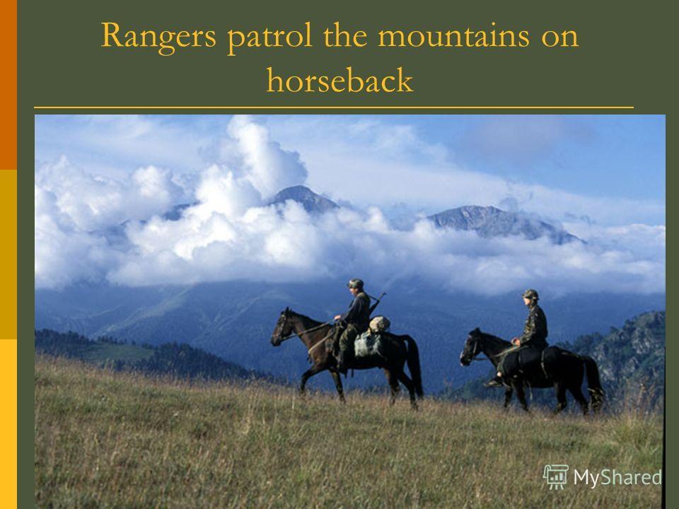 Rangers patrol the mountains on horseback