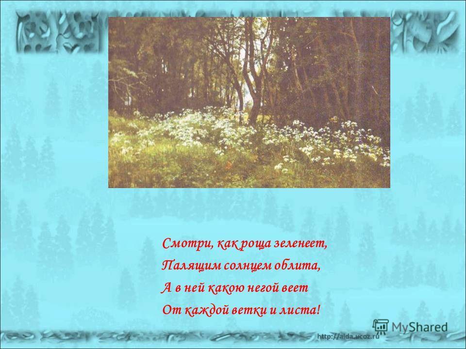 Смотри, как роща зеленеет, Палящим солнцем облита, А в ней какою негой веет От каждой ветки и листа!