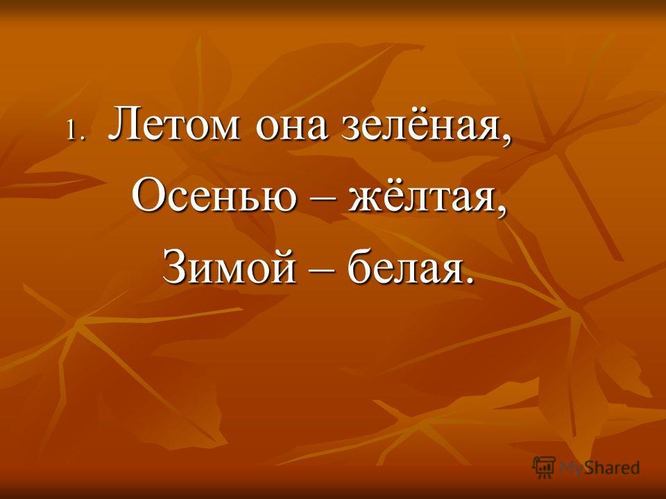 1. Летом она зелёная, Осенью – жёлтая, Осенью – жёлтая, Зимой – белая. Зимой – белая.