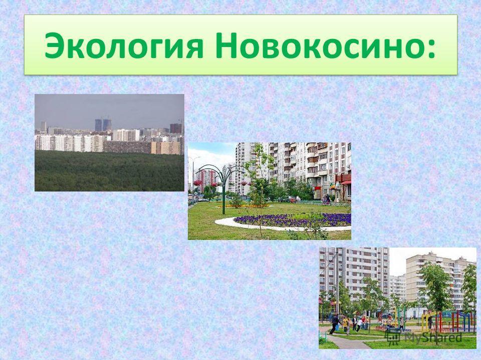 Экология Новокосино: