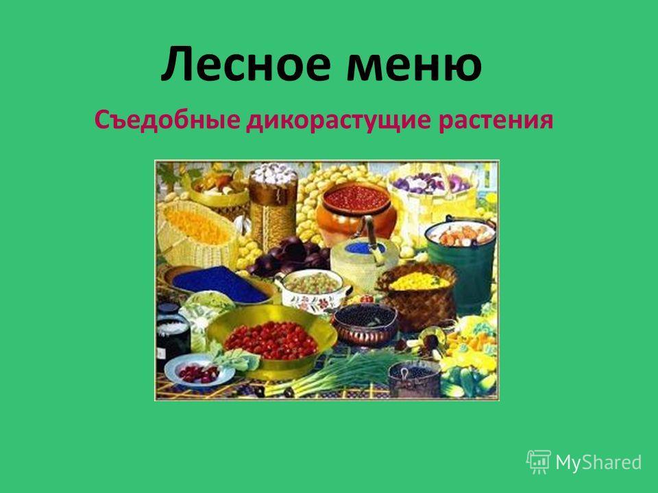 Лесное меню Съедобные дикорастущие растения