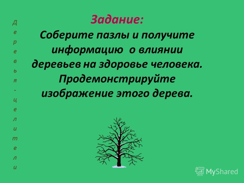Задание: Соберите пазлы и получите информацию о влиянии деревьев на здоровье человека. Продемонстрируйте изображение этого дерева.