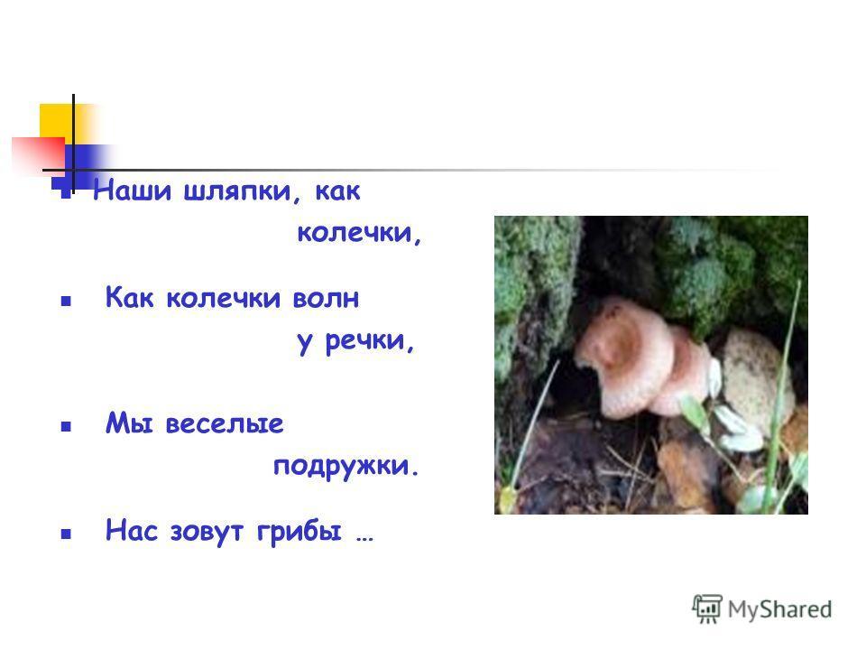 Наши шляпки, как колечки, Как колечки волн у речки, Мы веселые подружки. Нас зовут грибы …