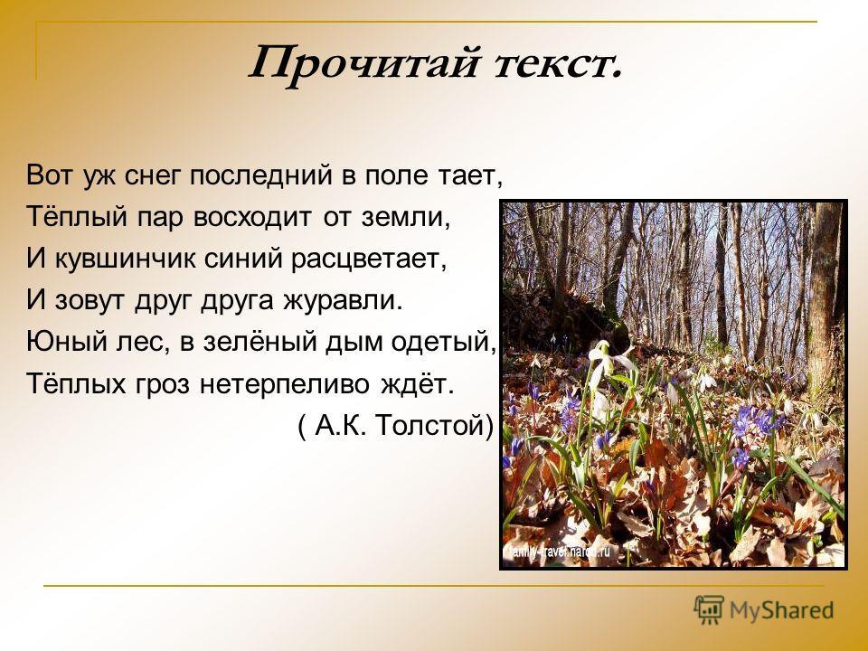 Прочитай текст. Вот уж снег последний в поле тает, Тёплый пар восходит от земли, И кувшинчик синий расцветает, И зовут друг друга журавли. Юный лес, в зелёный дым одетый, Тёплых гроз нетерпеливо ждёт. ( А.К. Толстой)