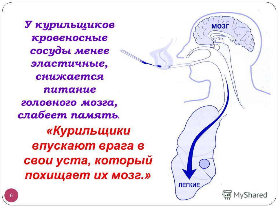У курильщиков кровеносные сосуды менее эластичные, снижается питание головного мозга, слабеет память. 6 «Курильщики впускают врага в свои уста, который похищает их мозг.»