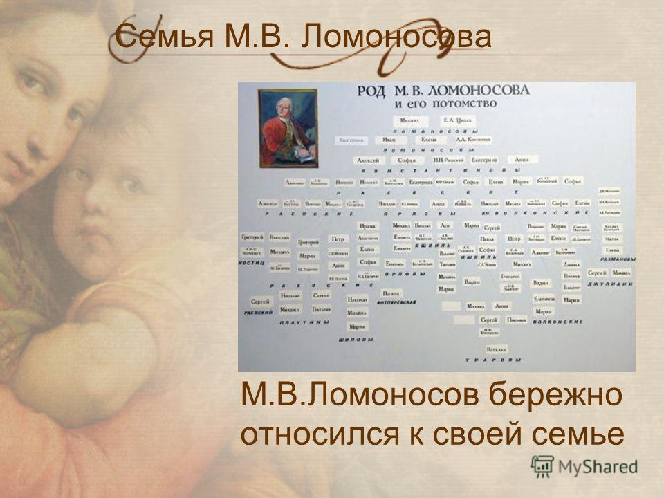 Семья М.В. Ломоносова М.В.Ломоносов бережно относился к своей семье