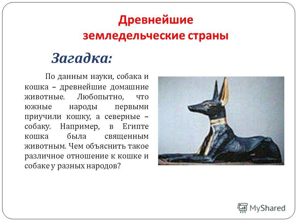 Древнейшие земледельческие страны Загадка : По данным науки, собака и кошка – древнейшие домашние животные. Любопытно, что южные народы первыми приучили кошку, а северные – собаку. Например, в Египте кошка была священным животным. Чем объяснить такое